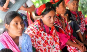 indigenas1