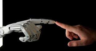 robot de compañia