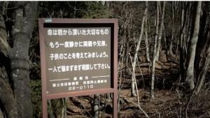 bosque del suicidio en japon